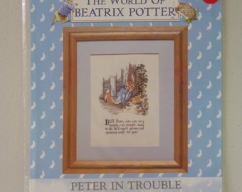 Beatrix Potter 579550 Peter In Trouble Cross Stitch Kit by DMC, New and Unopened (S004)