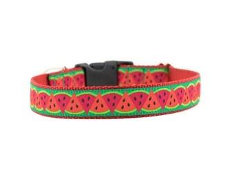 """Sliced Watermelon Dog Collar, Summer Dog Collar, Watermelon Collar, 1"""" Wide"""
