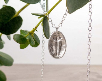 Silver Trilobite Fossil Pendant - Silver Fossil Necklace - Insect Jewellery - Palaeontology Necklace - Birthday Gift - Fossil Jewellery