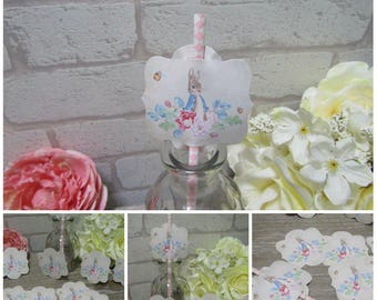 12 Peter Rabbit Straw or Cupcake Toppers ,Decoration,Christening,Baby,Birthday