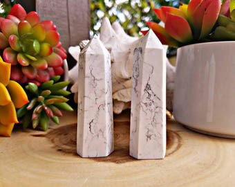 Self Standing Howlite Crystal Points