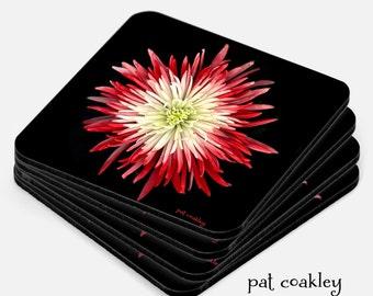 Red and White Confetti Mum Fine Art Coaster Set | Hostess Gift