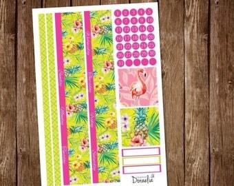 Flamingo Happy Planner Monthly, Happy Planner Classic Monthly