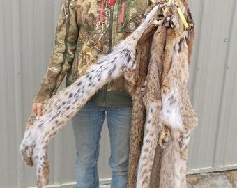 Tanned Bobcat pelt, hide, fur Spots Mississippicat