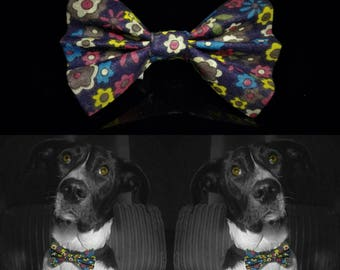 Flowerparty Dog Bow Tie - Colourful