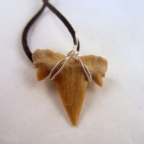 Shark tooth Necklace: Natural Crystal Pendant, Stone Jewelry