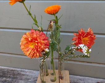 Square wooden Oak Test Tube Vase