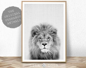 Lion Print, Safari Nursery Animal Wall Art, Baby Shower Decor, Digital Download Large Printable Poster, Black and White Photo, Lila and Lola