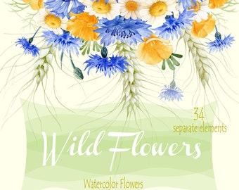 Wild Flowers Watercolor Separate elements, Hand painted clipart - Cornflowers, Chamomiles, Spicas,  Scrapbooking, Wedding invitations