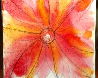 Garden hues 1