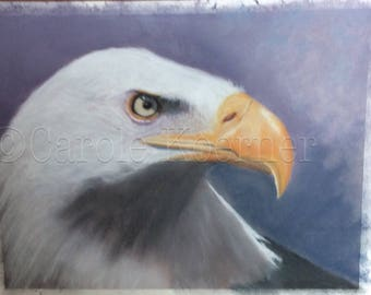Bald Eagle pastel painting