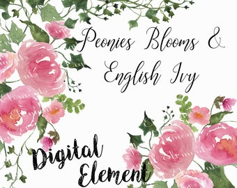 Floral Clip-art, Watercolor Peony Clip-art, Watercolor English Ivy Clip-art, Pink Floral Peony Clip-art. No. WC48