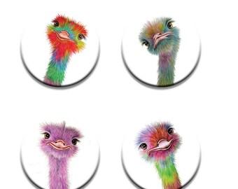A pack of 4 Maria moss Artist pop art Ostriches design Pattern weights fabric weights