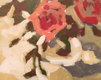Warm Roses