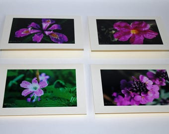 All Occasion Blank Cards - Flowerfest! - Set of 4 Photo Cards