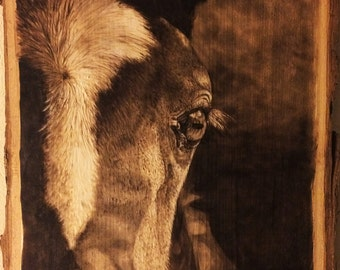 Handmade Wood Burning Art of a Foal