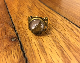 Brass Pressed Fern Cabochon Filigree Ring