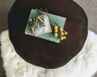 Rustic Tree Trunk Coffee Table