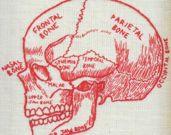 Skull Diagram. Framed Embroidery, Scientific Diagram Design