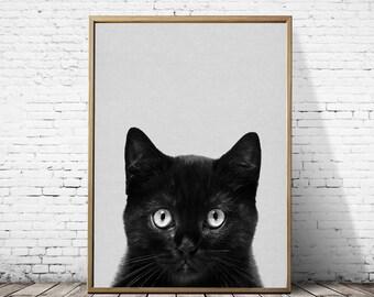 Cat art print,Wall art,Art print,Cat print,Cat photography,Black cat,Nursery animal,Animal print,Pet print,Cat decor,Gift for her, Gift
