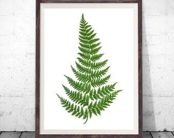 Fern Print, botanical wall art, botanical print, botanical art, vintage botanical, botanical poster, plant wall art, botanical prints