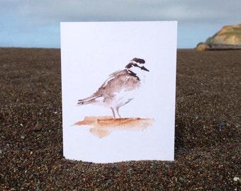 Watercolor Snowy Plover Card