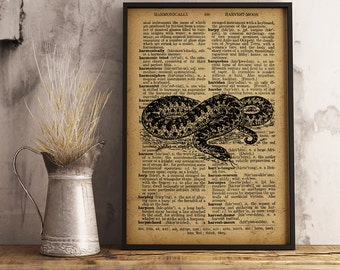 Snake Print, Snake Dictionary Art Print, Vintage Reptile illustration wall art home decor, Reptile Print, reptile terrarium print (RS02)