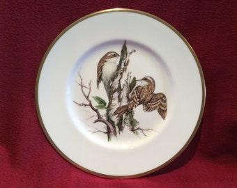 """Coalport British Birds Tree Creeper Bone China Plate 10 3/4"""" diameter"""