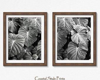 Tropical Print, Set Of 2 Prints, Black and White Photography, Print, Botanical Print, Wall Art, Posters, Prints, Leaf Print, Designer Art