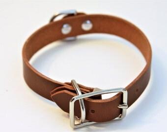 Medium Genuine Leather Dog Collar (DarkBrown) 17''