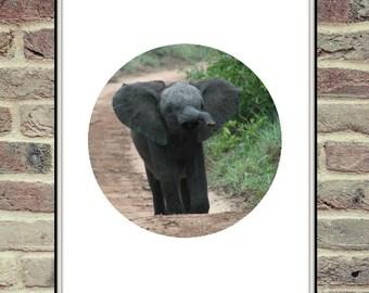 Elephant Circle Etsy