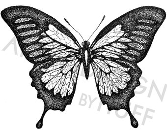 Butterfly Pen and Ink Stippled Drawing
