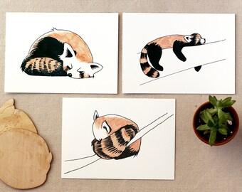 "Sleepy Red Pandas Gicleé Art Print | Set of 3 5x7"""