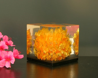 Lucite paperweight, cased mineral in solid resin block, 1970s, mid century acrylic paperweight, time capsule