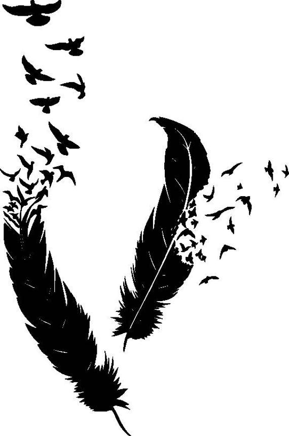 Feather Made Of Birds Art Writing Writer Sybolism Life Meaning