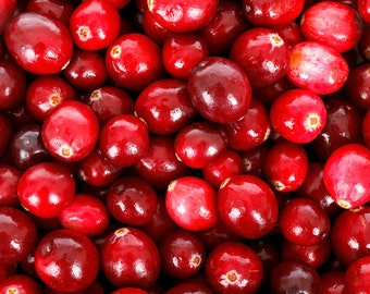 Organic Cranberry Seed Oil UNREFINED Cold Pressed UNDILUTED Cranberry Seed Oil CO2 Extract Carrier Oil, Massage Oil, Facial Oil, Edible Oil
