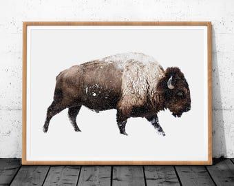 Bison Print, Animal Poster Print, Large Wall Art Print, Bison Digital Prints, Bison Poster Print, Buffalo Wall Art, Bison Wall Decor, Bison