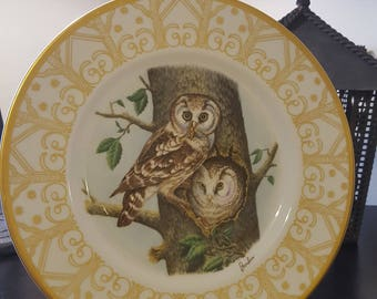 On Sale, Collectible Plate, Owl Plate, Edward Marshall Boehm, Boehm Plate, Collectible Owl Plate, Boreal Owl, Vintage Plate, Owl Plate