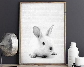 Rabbit Print, White Rabbit Wall Decor, Woodlands Nursery Art, Nursery Animal Prints, Digital Download - 059