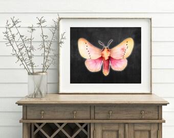 Printable Moth Art - Red/Orange/Tan Moth, Butterfly Moth Art, Moth Decor, Butterfly Poster, Moth Poster, 3D Moth Art, Moth Download