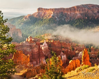 """Bryce Canyon Print 