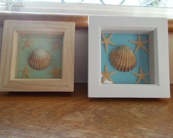Price drop- Seashell and starfish frames