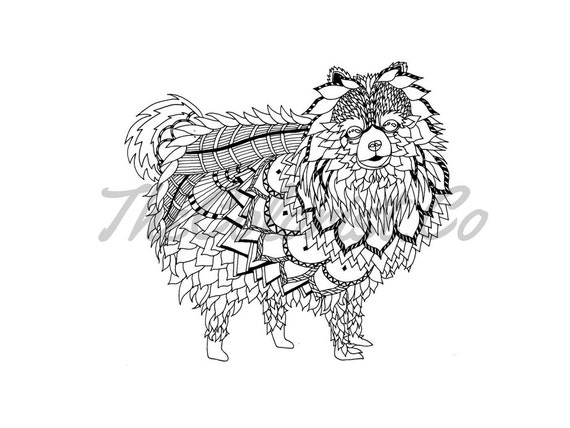 Pomeranian Dog Coloring Page & Line Art Print from TheColoristShop ...