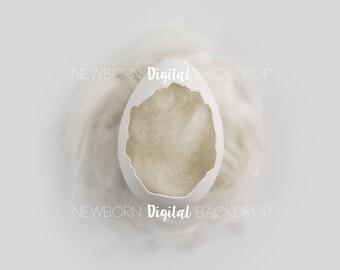 Easter Digital Backdrop Background Easter Egg White Wool Newborn Digital