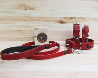 Dog Collar and Leash Set in Red Leather - Comfort Adjustable Collar and Strong Classic 4 Foot Colorful Leash with Comfort Grip - YupCollars