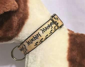 "Mischief Managed - Harry Potter inspired adjustable dog collar 1"" wide"