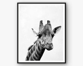 Nursery Print, Giraffe Print, Animal Poster, Nursery Poster, Giraffe Wall Art, Nursery Decor, Giraffe Poster, Animal Print, Nursery Art