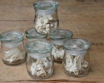 Jar of Bones - Memento Mori