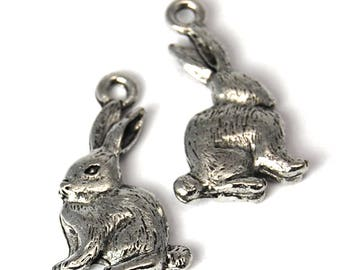 2pc, Rabbit Charm, Pewter