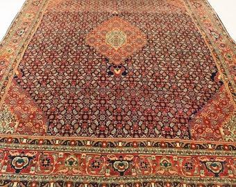 Carpet Bidjar Herati Antique